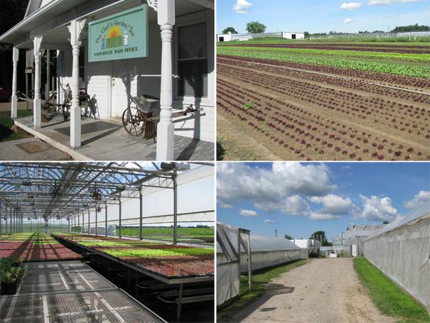 world class produce in Ohio